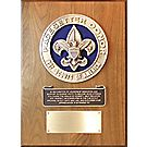 Pacesetter Donor Plaque