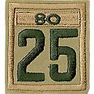 Two-digit Custom Unit Numeral with Veteran Bar