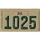 Four-digit Custom Unit Numeral with Veteran Bar