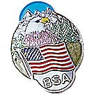 Eagle USA/BSA Staff Shield