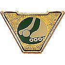 Varsity Scout Activity Pins