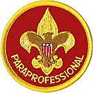 Paraprofessional Emblem