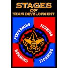 National Youth Leadership Training Stages Chart