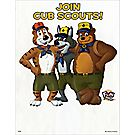 Cub Scout™ Tiger Akela Baloo Fliers (2,000/package)