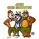 Cub Scout™ Tiger Akela Baloo Poster (100/Pack)