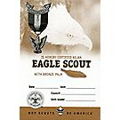 Eagle Scout with Bronze Palm Pocket Certificate, Single