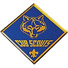 Cub Scout Domed Decal