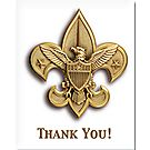 Boy Scout™ Thank You Cards, 20 pack