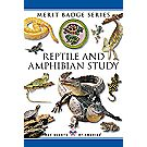 Reptile and Amphibian Study