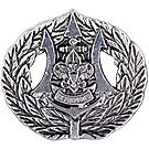 Sea Scout Recognition Badge Pin