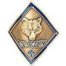 Cub Scout Staff Shield
