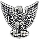 Sterling Silver Eagle Scout Pin