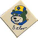 Cub Scout™ Hat Pins