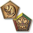 Wood Badge Beaver Medallion Coin
