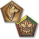Wood Badge Fox Medallion Coin