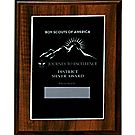 Journey to Excellence District Silver Plaque