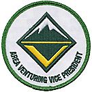 Area Venturing Vice President Emblem