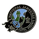 2013 Jamboree® Action Pin - Skateboarding