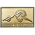 Journey to Excellence Gold Pin