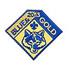 Cub Scout™ Blue & Gold Collectible 2013 Emblem