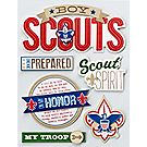 Boy Scout™ 3D Stickers