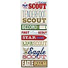 Boy Scout™ Chipboard Rank 3D Stickers