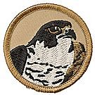 Falcon Patrol Emblem