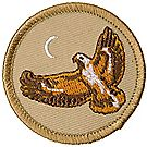 Hawk Patrol Emblem