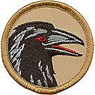 Raven Patrol Emblem