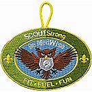 SCOUTstrong Medwise Emblem