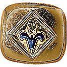 Webelos Scout Neckerchief Slide