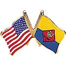 Cub Scout/USA Flags Pin