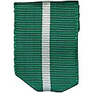 Scouters Training Award Ribbon