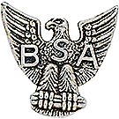 Eagle Scout Rank Pin