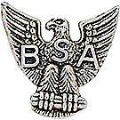 Eagle Scout Rank Pin