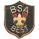 BSA® Best Pin