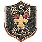 BSA® Best Pin