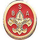 BSA® Emblem Pin
