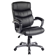 Picture of Techniflex Executive Office Chair
