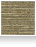 "DF00763|Next Level Havana-56"" wide