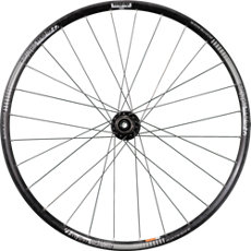 Rhythm Elite TLR Disc