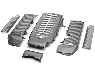 Intake Plenum and Fuel Rail Covers (05-10 GT)