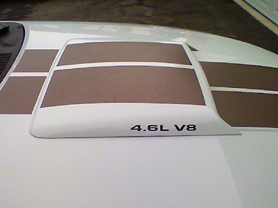 4.6L V8 Hood Scoop Decals - Black (96-10 All)