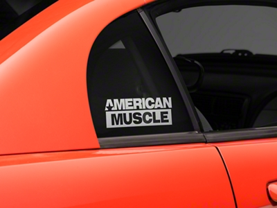 AmericanMuscle Quarter Window Decal - Frosted (94-04 All)