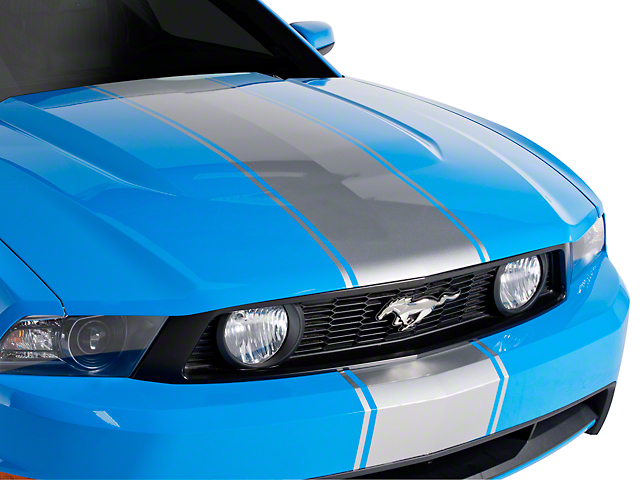 Silver Super Snake Style Stripe Kit (79-16 All)