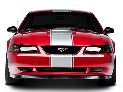 Silver Super Snake Style Stripe Kit (94-04 All)