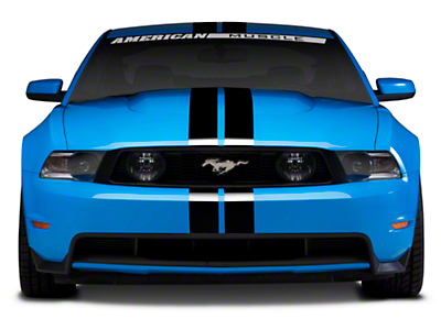 Black GT500 Style Stripes - 5in (79-14 All)