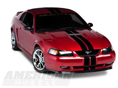 Black GT500 Style Stripes - 5 in. (94-04 All)