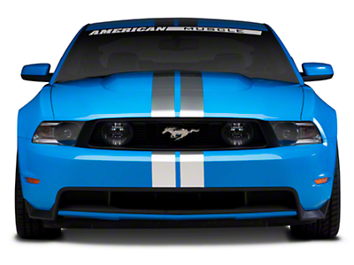 Silver GT500 Style Stripes - 5 in. (79-14 All)