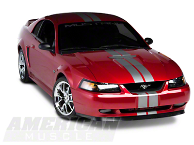 Silver GT500 Style Stripes - 5 in. (94-04 All)